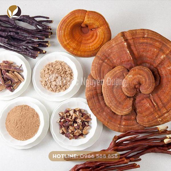 Lưu ý về những đối tượng không nên sử dụng nấm linh chi