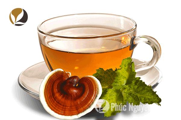 Công dụng của nấm linh chi là gì? Nấm linh chi uống có tốt không?
